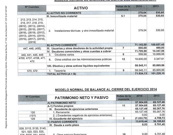 balances_activo_fedema.jpg